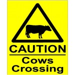 CAUTION COWS CROSSING SIGN