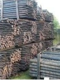 """CRESOTED STAKES 6ft x 4-4.5"""" (BUNDLE 60)"""