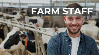 The Farm Staffing Specialists In Ireland And The UK, Farm Solutions